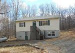 Foreclosed Home in Bushkill 18324 BEAR DR - Property ID: 3666914680