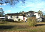Foreclosed Home in Blountstown 32424 NE BRIDGES AVE - Property ID: 3677123851