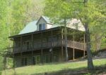Foreclosed Home in Hiawassee 30546 GAGE DR - Property ID: 3677584596