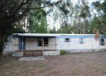 Foreclosed Home in Riverview 33579 ANDERSON DR - Property ID: 3679980311