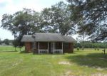 Foreclosed Home in Richton 39476 OTHO SELLERS RD - Property ID: 3703982602
