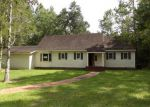 Foreclosed Home in Blountstown 32424 SW DOGWOOD AVE - Property ID: 3713856730