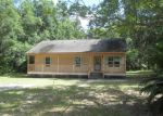 Foreclosed Home in Hawthorne 32640 LAMBERTH POND RD - Property ID: 3715384824