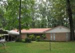 Foreclosed Home in Searcy 72143 CHOCTAW DR - Property ID: 3722571984