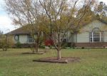 Foreclosed Home in Middleburg 32068 SEMINOLE VILLAGE DR - Property ID: 3728647998