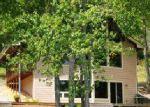 Foreclosed Home in Hiawassee 30546 DOGWOOD TRL - Property ID: 3730034615