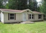 Foreclosed Home in Saint Germain 54558 WOODLAND DR - Property ID: 3744367305