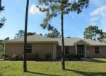 Foreclosed Home in Navarre 32566 BELLINGHAM ST - Property ID: 3746919380