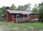Foreclosed Home in Middleburg 32068 GREEN ACRE RD - Property ID: 3747207120