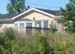 Foreclosed Home in Goodells 48027 CARD RD - Property ID: 3772747588