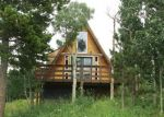 Foreclosed Home in Idaho Springs 80452 FIREWEED LN - Property ID: 3776957837