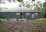 Foreclosed Home in Palm Coast 32164 ZENOBLE PL - Property ID: 3784163377