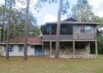 Foreclosed Home in Homosassa 34446 S BAMMA DR - Property ID: 3784584712
