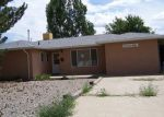 Foreclosed Home in Aztec 87410 RIO HONDO RD - Property ID: 3789341994