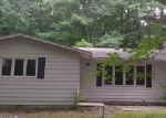 Foreclosed Home in Lake 48632 WOODLAND DR - Property ID: 3794177657