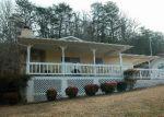 Foreclosed Home in Hiawassee 30546 RIVER ST - Property ID: 3795180166