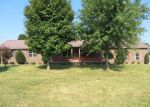 Foreclosed Home in Mount Vernon 40456 MARETBURG CEMETERY RD - Property ID: 3804675900