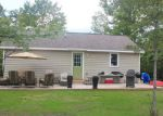 Foreclosed Home in Traverse City 49696 BROWN BRIDGE RD - Property ID: 3806497871