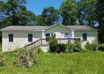 Foreclosed Home in Splendora 77372 HORIZON LN - Property ID: 3818612210