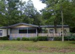 Foreclosed Home in Yulee 32097 WINONA BAYVIEW RD - Property ID: 3820333454