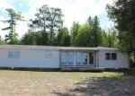 Foreclosed Home in Hessel 49745 N SAINT MARTINS PT - Property ID: 3824719776