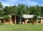 Foreclosed Home in Palm Harbor 34685 STAG THICKET LN - Property ID: 3829778813