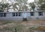 Foreclosed Home in Westville 32464 JOHN LN - Property ID: 3840591957