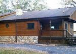 Foreclosed Home in Battle Lake 56515 PINE TREE RD - Property ID: 3856832456