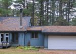 Foreclosed Home in Gaylord 49735 NEWAGO TRL - Property ID: 3862128441