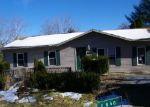 Foreclosed Home in Vienna 62995 POND RD - Property ID: 3864319630