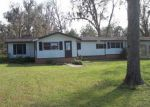 Foreclosed Home in Nahunta 31553 CANEY BAY RD - Property ID: 3873547742