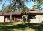 Foreclosed Home in Spring Hill 34610 TREATY RD - Property ID: 3876770794