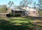 Foreclosed Home in Mount Olive 35117 GRAHAM RD - Property ID: 3878887519