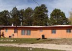 Foreclosed Home in Custer 57730 N 4TH ST - Property ID: 3886081232