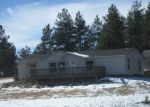 Foreclosed Home in Florissant 80816 MESA DR - Property ID: 3889676121