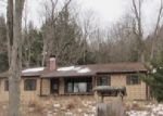 Foreclosed Home in Sidney Center 13839 WHEAT HILL RD - Property ID: 3889833810
