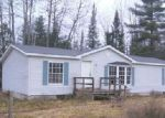 Foreclosed Home in Frederic 49733 CHAFFIN RD - Property ID: 3890999245