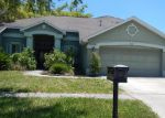 Foreclosed Home in Lithia 33547 LARK MEADOW PL - Property ID: 3891339560