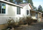 Foreclosed Home in Durango 81303 DEER TRAIL RD - Property ID: 3892269372