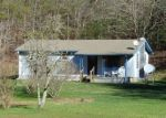 Foreclosed Home in Warne 28909 PINE LOG RD - Property ID: 3902647155