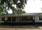 Foreclosed Home in Little Mountain 29075 WHEELAND RD - Property ID: 3914675241
