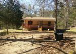 Foreclosed Home in Liberty Hill 29074 JOHN G RICHARDS RD - Property ID: 3932865172