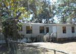 Foreclosed Home in Spring Hill 34610 WAXWEED AVE - Property ID: 3933792824