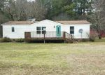 Foreclosed Home in Tyner 27980 ICARIA RD - Property ID: 3937203761