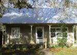 Foreclosed Home in Waldo 32694 NE 138TH ST - Property ID: 3939162819