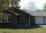 Foreclosed Home in Woodbine 31569 MALLARD POINTE DR - Property ID: 3947623594