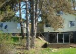 Foreclosed Home in Battle Creek 49017 WAUBASCON RD - Property ID: 3947651629