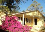 Foreclosed Home in Manning 29102 LAKEVIEW DR - Property ID: 3951585954