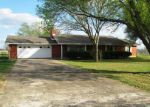 Foreclosed Home in Elgin 78621 QUARTERHORSE DR - Property ID: 3951621415