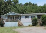 Foreclosed Home in Dahlonega 30533 MOUNTAIN POINTE DR - Property ID: 3951984955
